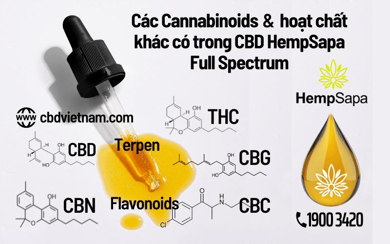 Cac-cannabinoids-va-hoat-chat-khac-trong-cbd-hempsapa-fullspectrum