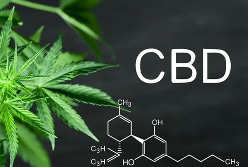 CBD là gì