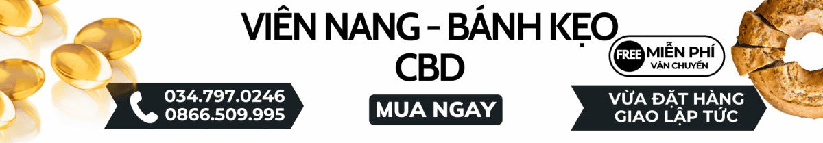 banh keo cbd - cover pc
