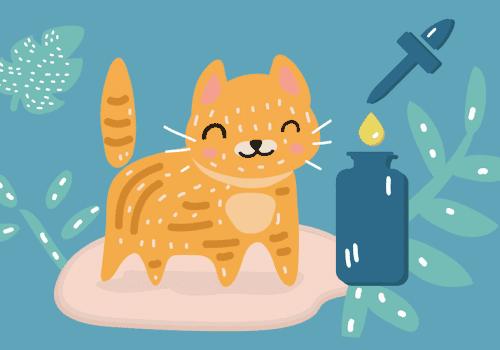 maple-cannabis-cbd-pets-cat(1)