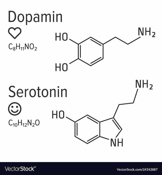 Hình ảnh liên quan tới cấu trúc hóa học của Serotonin